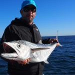 P6120193 150x150 Broome's inshore and offshore reefs has been producing excellent fishing for charters through May and June!
